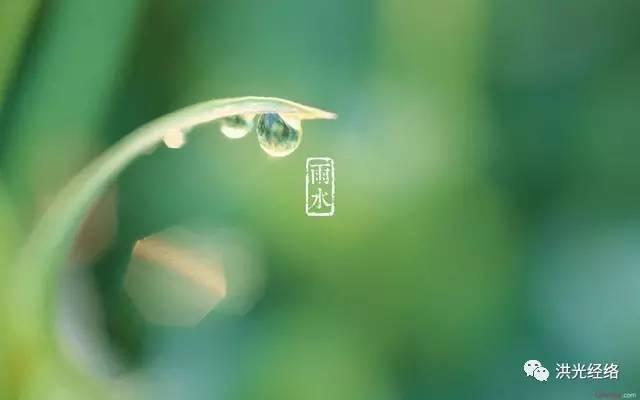 今日雨水,赶紧养阳气防疾病