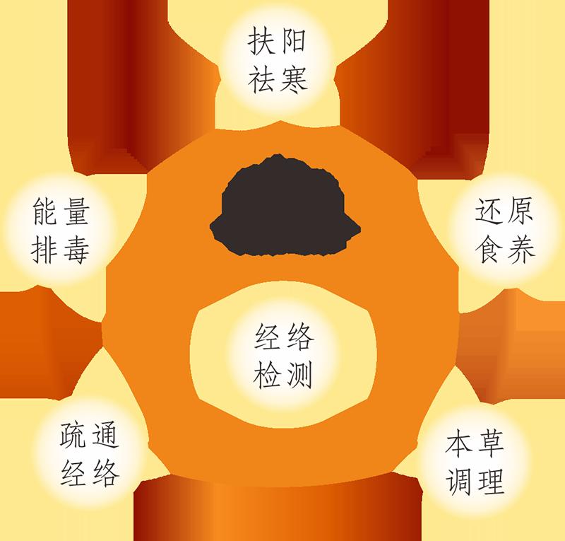 2017raybet雷竞技雷竞技app下载官方版雷竞技画册1 AO2017-1-3-.png